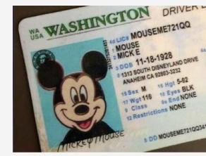ミッキーマウス免許証画像