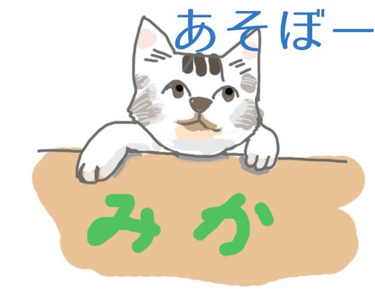 猫、あそぼー画像