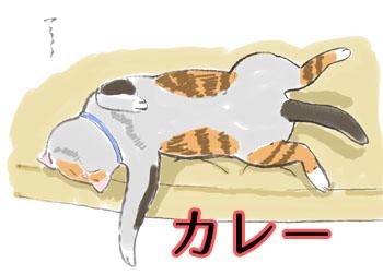 猫イラスト画像